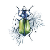 Watercolor beetle on a floral background. Animal, insects. Magic flight. Can be printed on T-shirts, bags, posters, invitations, cards, phone cases, pillows. - 191798121