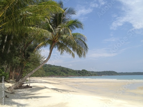 Fotobehang Thailand Tropical Beach scene with white sand and palm trees