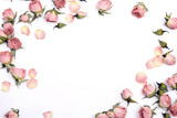 Frame of small dry roses on white background. Place for text. - 191821790