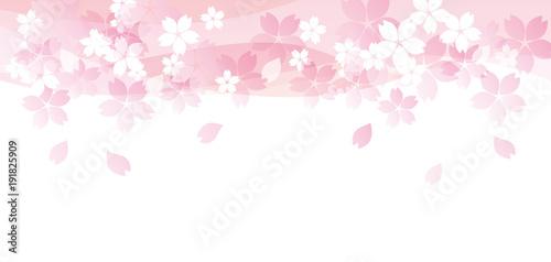 桜たくさん ピンク 上 二