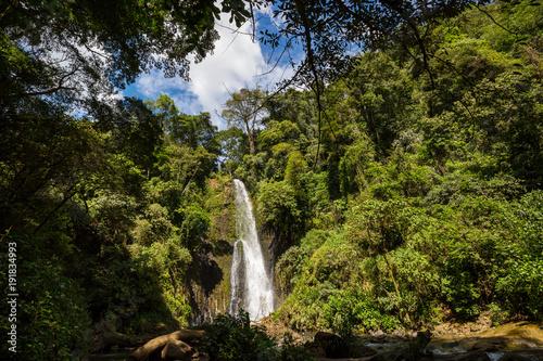 Fotobehang Galyna A. Waterfall in jungle