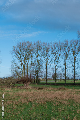 Foto op Canvas Blauw Simple nature view