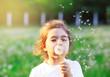 Leinwandbild Motiv Beautiful little Girl blowing dandelion flower in sunny summer park. Happy cute kid having fun outdoors at sunset.