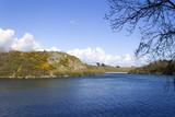 Bosherston Lily Pond...