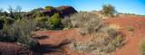 vue panoramique au milieu de collines de terre ocre avec des plantes vertes - 191894107