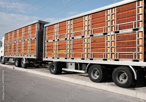 trucks for transporting live animals