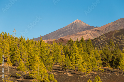 Fotobehang Blauw Teide National Park, Tenerife, Canary Islands - A picturesque view of the colourful Teide volcano, or in spanish 'Pico del Teide'. The tallest peak in Spain with an elevation of 3718 m