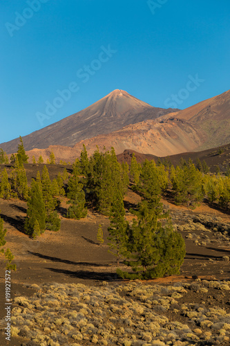 Fotobehang Blauwe jeans Teide National Park, Tenerife, Canary Islands - A picturesque view of the colourful Teide volcano, or in spanish 'Pico del Teide'. The tallest peak in Spain with an elevation of 3718 m