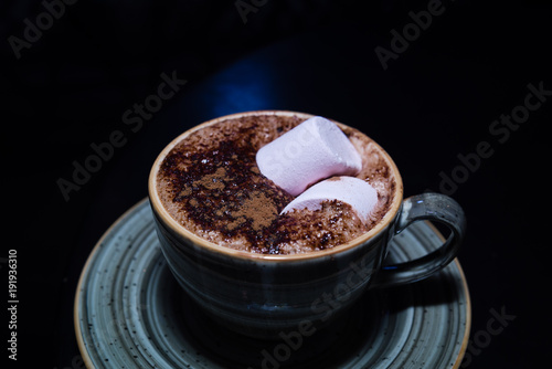 Foto op Plexiglas Chocolade Marshmallows on Hot Chocolate, Ready for snack