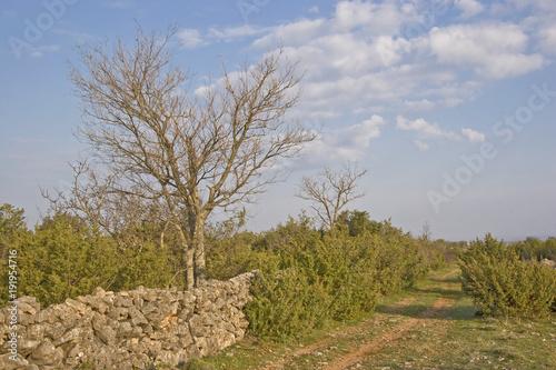 Kroatische Landschaft