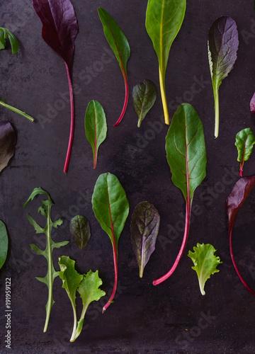 baby salad leaves
