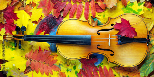 violin-and-autumn-leaves