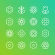 Set of flower line icons. Color Vector Illustration, flat design.  - 191977544