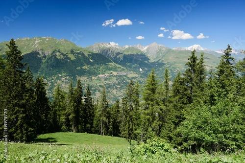 Fotobehang Pistache Paysage alpes