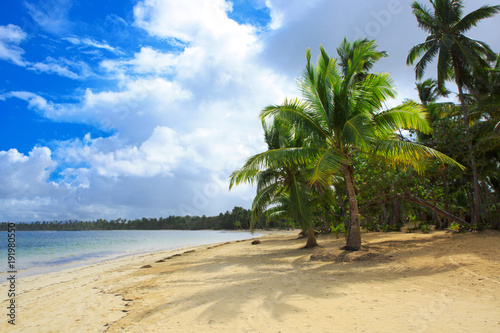 Foto op Plexiglas Tropical strand Palm trees on white tropical beach.