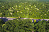 Aerial Shot of Forest and Road