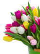 Bouquet of tulips flowers - 191989525