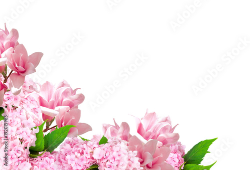 Fotobehang Hydrangea Magnolia and hortensia isolated on white background