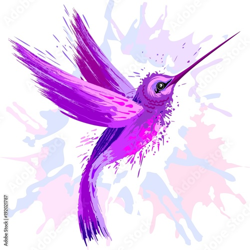 Poster Draw Hummingbird Spirit Purple Watercolor