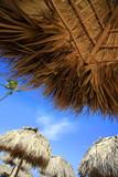 Straw umbrella on Bavaro Beach - 192029199