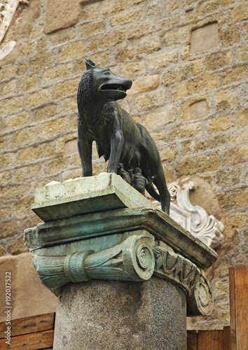 Staande foto Rome Capitoline Wolf in Rome. Italy