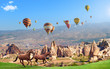 Hot air balloons and two horses in Cappadocia, Turkey