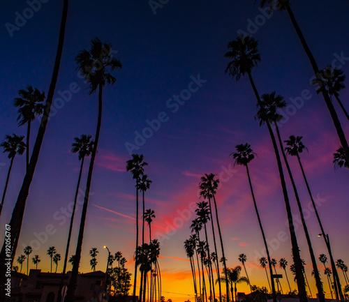Fotobehang Strand Long Beach - California