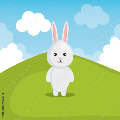 Poster cute rabbit in landscape vector illustration design