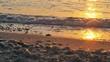 Quadro sunrise over sea 4k