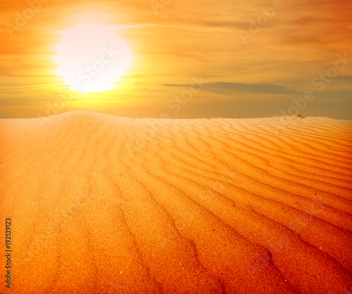 Fotobehang Oranje eclat sand desert landscape