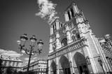 Notre Dame de Paris black and white, France - 192143343