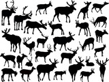 thirty deer silhouettes on white - 192143585