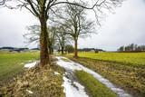 Dirt road in winter - 192143743