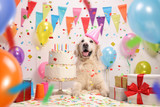 Labrador retriever dog with a birthday cake