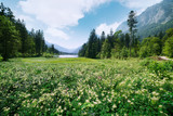 Amazing sunny summer day on the Hintersee lake in Austrian Alps, Europe. Landscape photography - 192169755