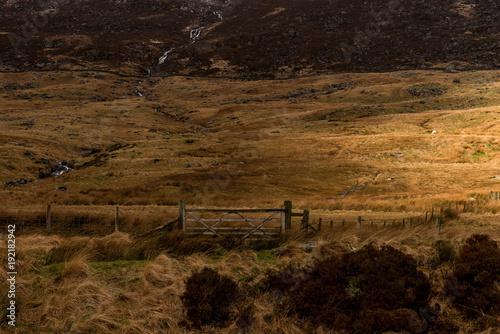 Fotobehang Diepbruine Gate to landscape