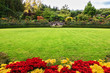 Green grass lawn and flower beds