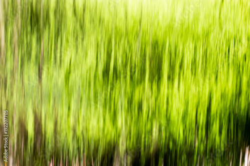 Foto op Canvas Lime groen Wall from water falls on nature as background