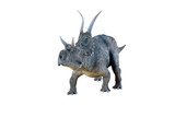 3d  The Diceratops Dinosaur   Wall Sticker