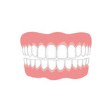 Jaw with teeth on white background, medicine concept. - 192231976