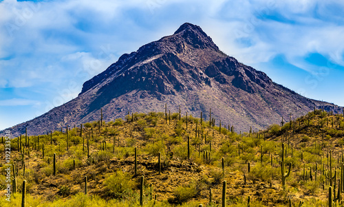 Deurstickers Arizona Mountain in Tucson Arizona Desert
