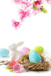 easter eggs and flowers isolated on white background