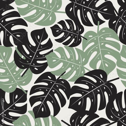 monstera-pozostawia-bez-szwu-desen-tropikalna-tekstura-wektor