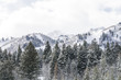 snowy mountain peak landscape in wasatch mountain range during snow storm.