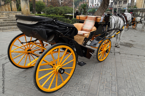 Horse carriage in front of Seville Santa Maria cathedral