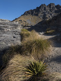 Fjordlands New Zealand Aerial