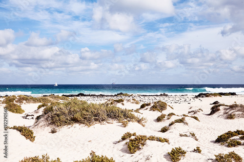 Tuinposter Canarische Eilanden Sandy beach with coastal vegetation, Lanzerote