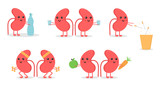 Set, collection of cartoon doodle kidney character, nice and smiling, doing different activities to keep themselves healthy. World kidney day illustrations. - 192291907