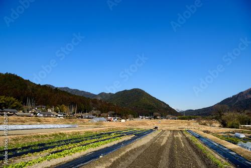 Papiers peints Kyoto 京都 大原の風景 冬