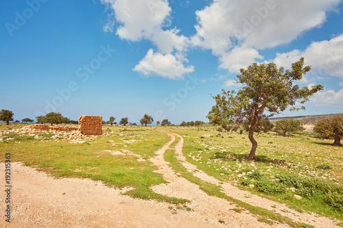 Foto Murales beautiful famous Avakas gorge in cyprus